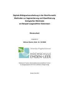 msc thesis pdf