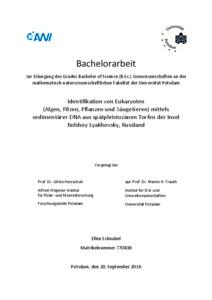 Dissertation ruwen schnabel