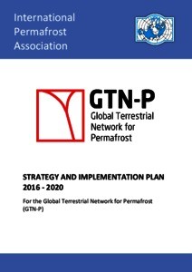 Strategy And Implementation Plan 2016 2020 For The Global