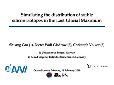 Simulating the distribution of stable silicon isotopes in
